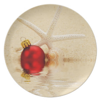 Merry Christmas Starfish Plate