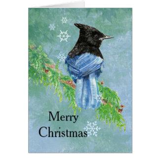Merry Christmas Stellar Jay Bird Scripture Art Card