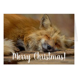 Merry Christmas Take It Easy Fox Card