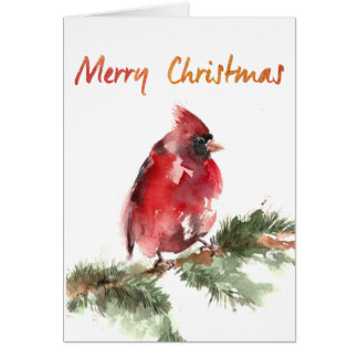 merry christmas watercolor red cardinal card