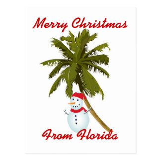 Merry Florida Christmas Postcard