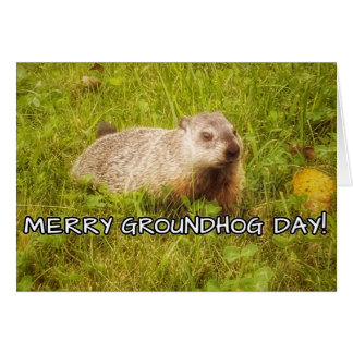Merry Groundhog Day Greeting Card