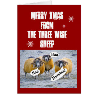 Merry Xmas from the three wise sheep Card