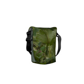 Mesage Bag - Fall lotus pond in a city park, China Courier Bag