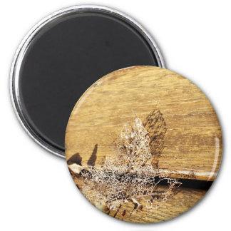 Meshed leaf magnet