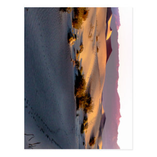 Mesquite Flat sand dunes Death Valley Postcard