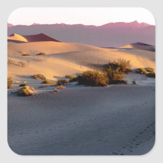 Mesquite Flat sand dunes Death Valley Square Sticker