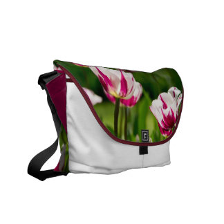 Messenger Bag * Tulip - 02
