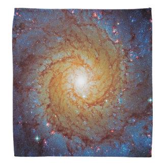 Messier 74 Spiral Galaxy Outer Space Photo Bandana