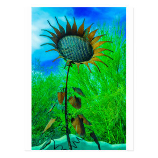 Metal Art Sunflower Colorful Background Postcard