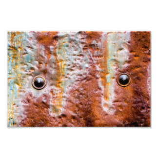 metal eyes rust art photo