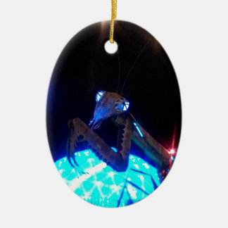 metal praying mantis - 1.jpg ceramic ornament