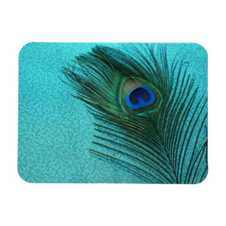 Metallic Aqua Blue Peacock Feather Rectangular Photo Magnet