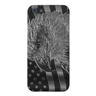 Metallic Eagle And American Flag iPhone 5 Cases