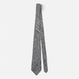 Metallic Surface Tie