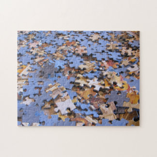 Metapuzzle 6: Don't Hate Me Jigsaw Puzzle