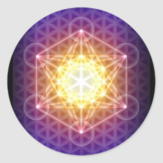 Metatron's Cube/Flower of Life Sticker - Round
