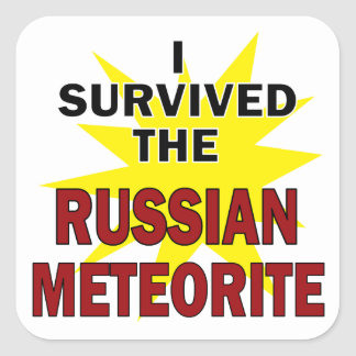 Meteor Survivor Square Sticker