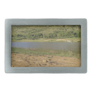 Meulspruit Dam 1 Belt Buckle