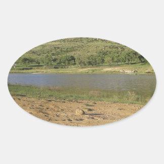 Meulspruit Dam 1 Oval Sticker