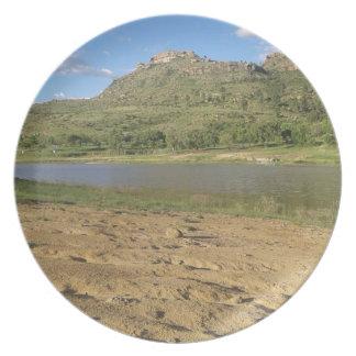 Meulspruit Dam 1 Plate