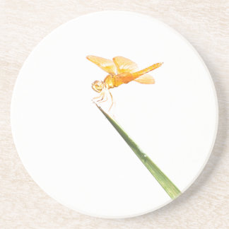 Mexican amber-wing Dragonfly Coaster