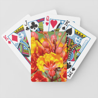 Mexican Bird of Paradise Bicycle Playing Cards