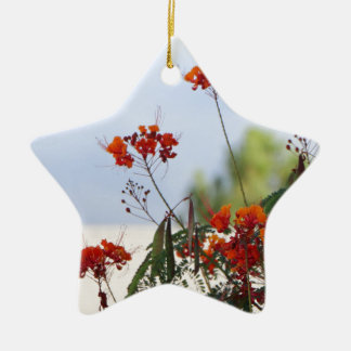 Mexican Bird of Paradise Ceramic Star Ornament