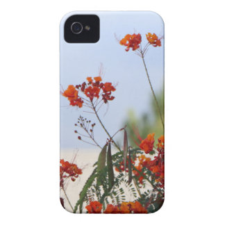 Mexican Bird of Paradise iPhone 4 Case-Mate Cases