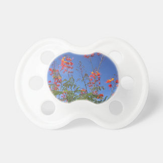 Mexican bird of paradise pacifier