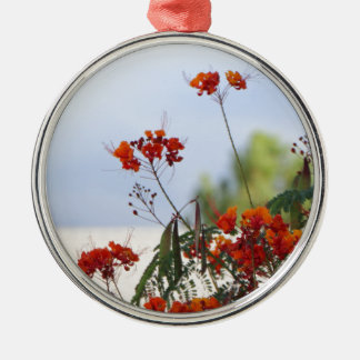 Mexican Bird of Paradise Silver-Colored Round Ornament