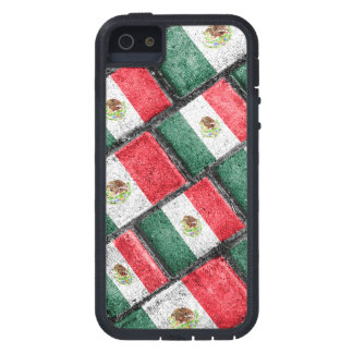 Mexican Flag Pattern Design Case For The iPhone 5