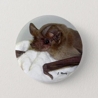 Mexican Free-tailed Bat 2 Inch Round Button