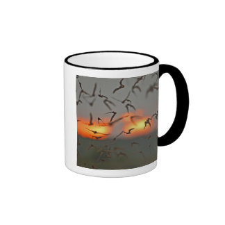 Mexican Free-tailed Bats Ringer Coffee Mug