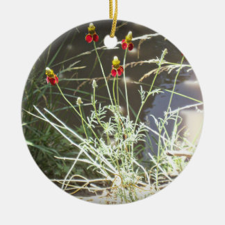 Mexican Hat Coneflower Flower in the Mountains Round Ceramic Ornament