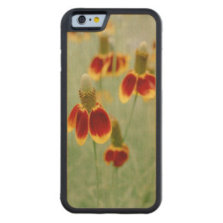 Mexican Hat Texas Wildflowers Carved Maple iPhone 6 Bumper Case