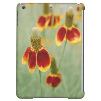 Mexican Hat Texas Wildflowers Case For iPad Air