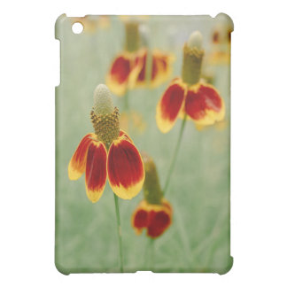 Mexican Hat Texas Wildflowers Cover For The iPad Mini