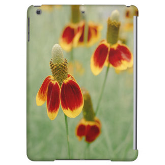 Mexican Hat Texas Wildflowers iPad Air Cover