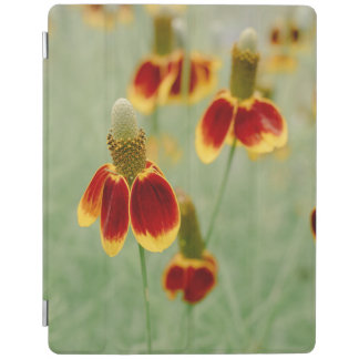 Mexican Hat Texas Wildflowers iPad Cover