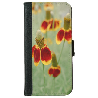 Mexican Hat Texas Wildflowers iPhone 6 Wallet Case