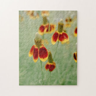 Mexican Hat Texas Wildflowers Puzzles
