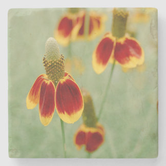Mexican Hat Texas Wildflowers Stone Coaster
