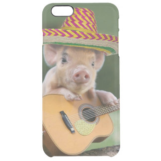 mexican pig - pig guitar - funny pig clear iPhone 6 plus case