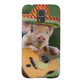 mexican pig - pig guitar - funny pig galaxy s5 case