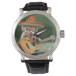 mexican pig - pig guitar - funny pig watch