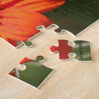 Mexican sunflower puzzle
