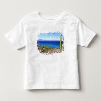 Mexico, Baja California Sur, Mulege, Bahia 2 Tee Shirt