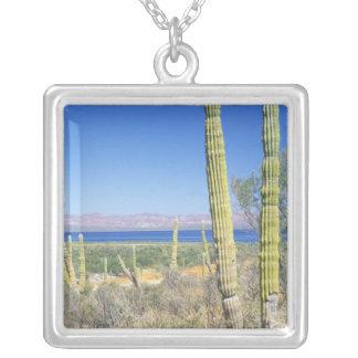 Mexico, Baja California Sur, Mulege, Bahia Silver Plated Necklace