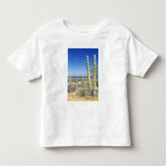 Mexico, Baja California Sur, Mulege, Bahia T Shirt